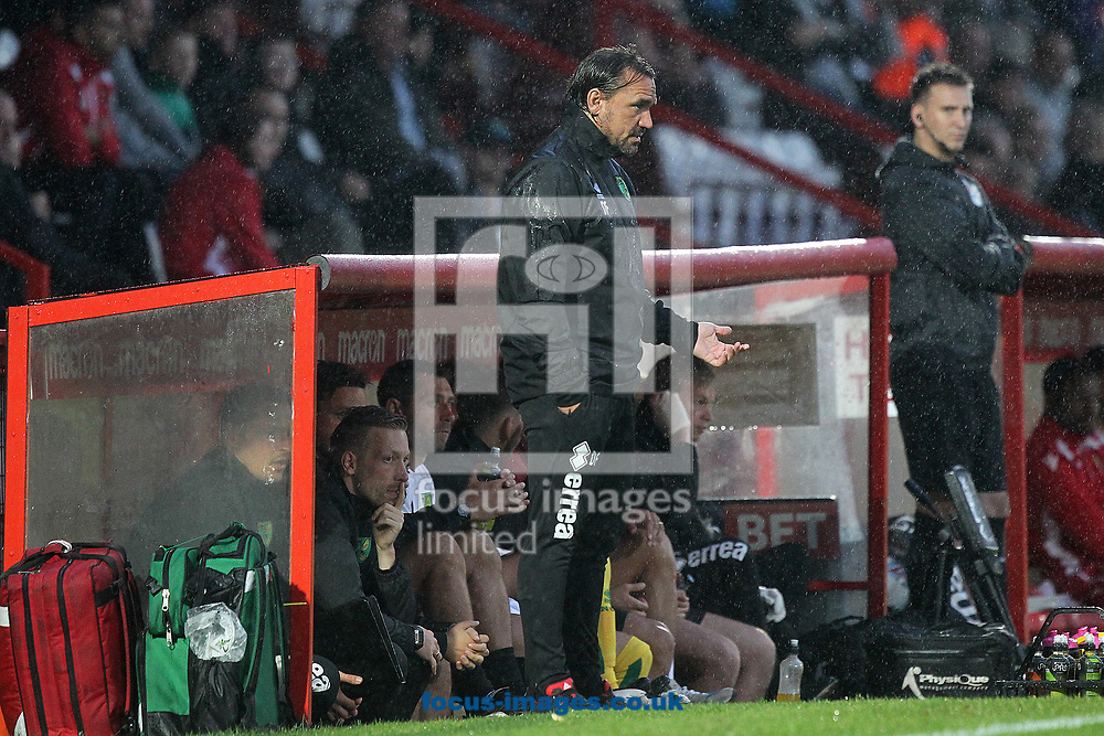 Norwich Head Coach Daniel Farke during the Pre-season Friendly match at the Lamex Stadium, Stevenage<br /> Picture by Paul Chesterton/Focus Images Ltd +44 7904 640267<br /> 11/07/2017