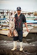 El pescador recibe $2.10 pesos por kilo de manto de calamar (sin cabeza), el permisionario (quien transporta el calamar del puerto a la empacadora a 10 minutos de distancia) lo re-vende a $3.00 pesos el kilo y a su vez, las empacadoras lo comercializan a alrededor de $100 pesos el kilo en la ciudad de Los Angeles CA.