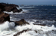 surf crashing into rock, Pacific Ocean; powerful, Shore Acres, Oregon