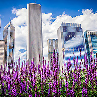 Photo of Chicago buildings and spring flowers with One Prudential Plaza building, Two Prudential Plaza building, Aon Tower, Aqua building, and Blue Cross Blue Shield building. Photo is high resolution and was taken in May of 2012.