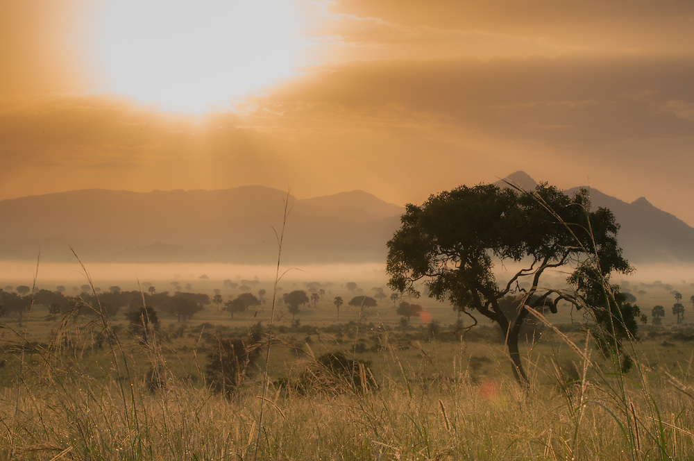 Sunrise at Kidepo National park, Uganda.