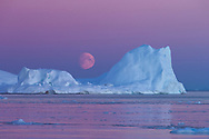 The moon rises over a large iceberg, Ilulissat Icefjord, West Greenland.