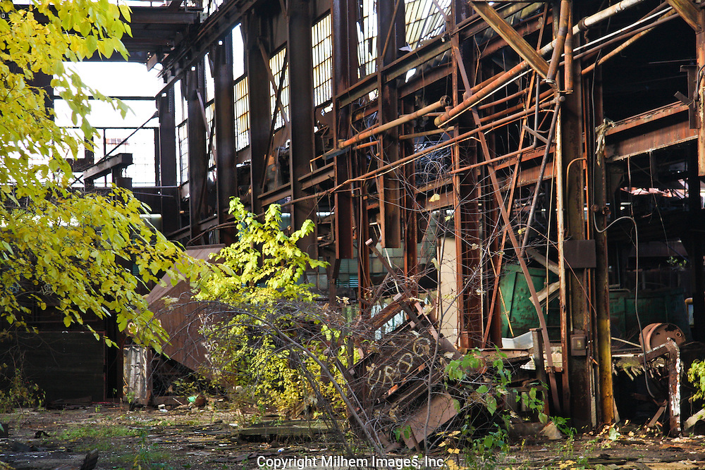 Abandoned Detroit Iron Works located on Detroit riverfront grows green inside plant.