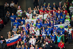 Supporters of Slovenia during the 2017 IIHF Men's World Championship group B Ice hockey match between National Teams of Slovenia and Belarus, on May 13, 2017 in AccorHotels Arena in Paris, France. Photo by Vid Ponikvar / Sportida