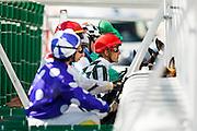 Horse racing at Zarzuela Hippodrome