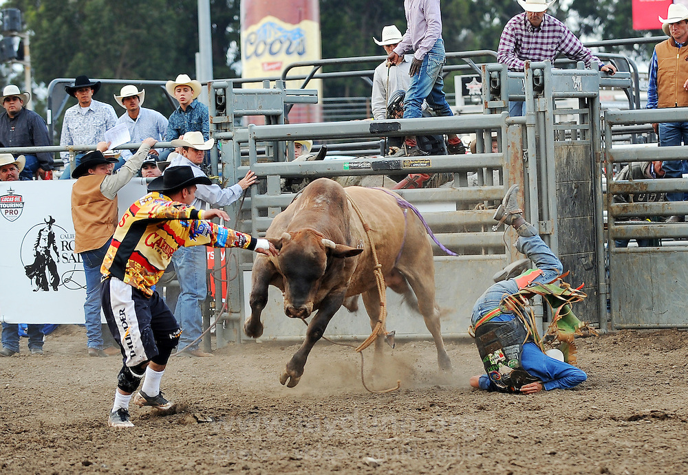 Damian Herden, from Emerald, Queeensland, Australia gets spilled by the bull Duck Butter in the first round of Wednesday's PBR Touring Pro Division event on Wednesday at the Salinas Sports Complex.
