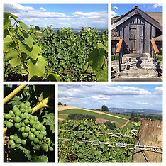 Winery Preview Gallery