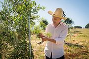 Bogdan Caceu of OGO and La Creole Orchards