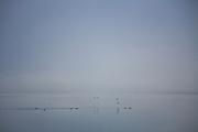 Misty winter light on Lake Wakatipu