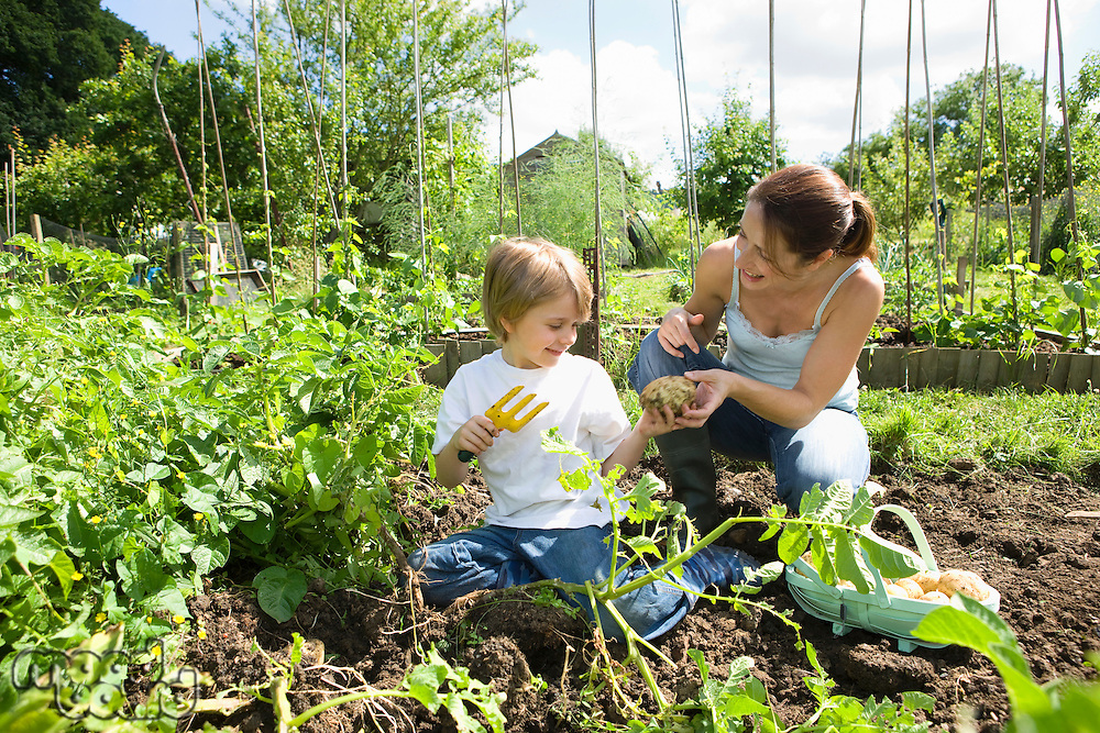 Mother gardening with son