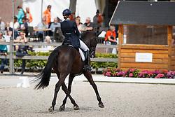 Maas Lynne, NED, Fantastique<br /> Nederlands Kampioenschap Dressuur <br /> Ermelo 2017<br /> © Hippo Foto - Dirk Caremans<br /> 15/07/2017