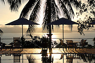 Palm trees reflected in pool.Horizon Hotel Mission Beach Queensland Australia