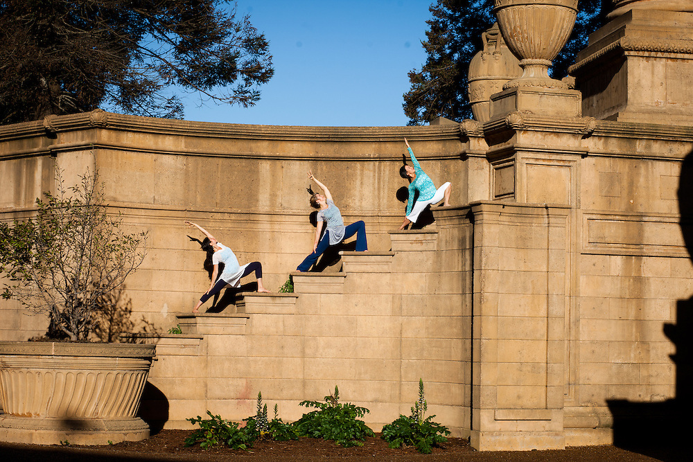 Dana Schachter, Darcy Lyon & Teri Wing at the Palace of fine arts, San Francisco
