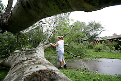 Stock photo of a man surveying the damage of a fallen tree after Hurricane Ike