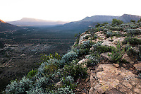 Views down the Mount Camdeboo Valley with distant mountains, Mount Camdeboo, Eastern Cape, South Africa