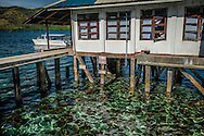 Rising high tide levels in the past decade and a half, due to climate change, threaten Jacque Branellec's pearl processing plant in Shark's Fin Bay.  Palawan, Philippines.