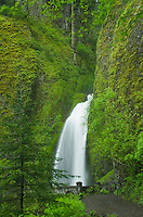 Wahkeena Falls, Columbia River Gorge National Scenic Area, Oregon
