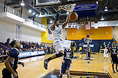 LIU Men's Basketball v. MSM 2014.01.25