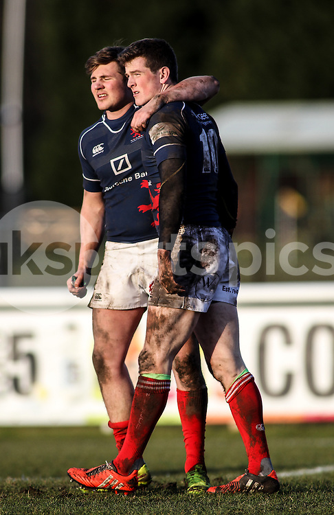 Peter Lydon crosses for the fifth try during the Green King IPA Championship match between London Scottish &amp; Moseley at Richmond, Greater London on 21st February 2015<br /> <br /> Photo: Ken Sparks | UK Sports Pics Ltd<br /> London Scottish v Moseley, Green King IPA Championship, 21st February 2015<br /> <br /> &copy; UK Sports Pics Ltd. FA Accredited. Football League Licence No:  FL14/15/P5700.Football Conference Licence No: PCONF 051/14 Tel +44(0)7968 045353. email ken@uksportspics.co.uk, 7 Leslie Park Road, East Croydon, Surrey CR0 6TN. Credit UK Sports Pics Ltd