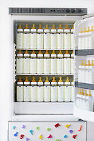 Fridge full of baby bottles with milk