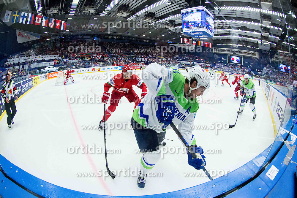 Nikolai Stasenko of Belarus and Anze Kopitar of Slovenia during Ice Hockey match between Belarus and Slovenia at Day 2 in Group B of 2015 IIHF World Championship, on May 2, 2015 in CEZ Arena, Ostrava, Czech Republic. Photo by Vid Ponikvar / Sportida