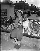 16/08/1952<br /> 08/16/1952<br /> 16 August 1952<br /> <br /> Holmes, Miss Phoebe with Mr W. N. Bennett's Bull Terrier, Bray Dog Show