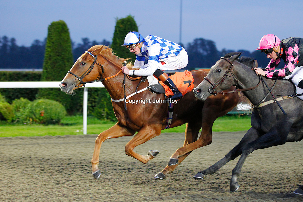 Tides Reach and James Doyle winning the 6.20 race