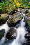 Rocks and boulders in a stream in the Columbia River Gorge National Scenic Area, Oregon