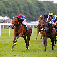 Newmarket 28th June 2013