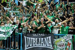 Green Dragons, fans, of Olimpija celebrate after winning during football match between ND Gorica and NK Olimpija Ljubljana in Round #10 of Prva liga Telekom Slovenije 2015/16, on September 19, 2015, in Sports park Gorica, Nova Gorica, Slovenia. Photo by Vid Ponikvar / Sportida