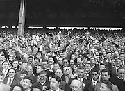 All Ireland Senior Football Championship Final, Kerry v Down, 25.09.1960, 09.25.1960, 25th September 1960, Down 2-10 Kerry 0-8,.Kerry Supporters Cheering, .Referee J Dowling (Offaly),.Captain K Mussen,.
