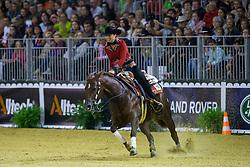 Ann Poels, (BEL), Nic Ricochet - Individual Final Comptetition - Alltech FEI World Equestrian Games™ 2014 - Normandy, France.<br /> © Hippo Foto Team - Leanjo De Koster<br /> 30-08-14