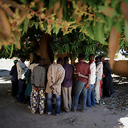 January 21, 2013 - Diabaly, Mali: Local people stand by a mango grove that islamic militants used as base in central Diabaly, a day after Mali government troops regain control of the city. Diabaly was under islamist militants control since the 14th of January.<br />