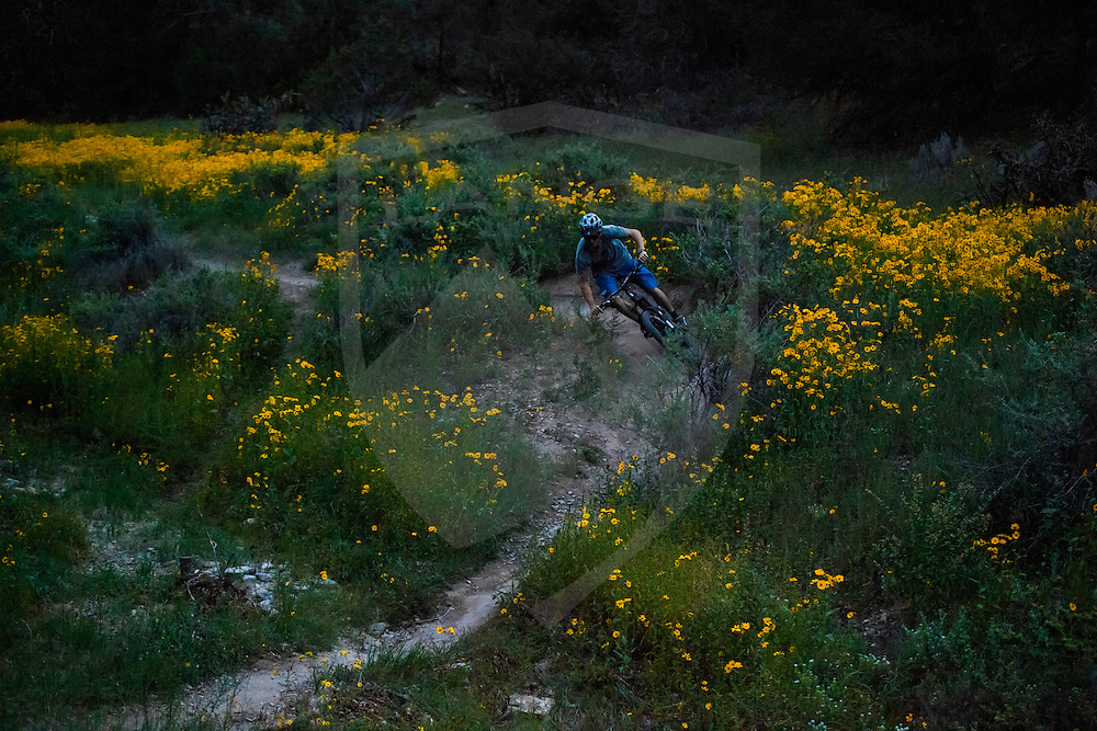 rider chris boice in otero canyon, tijeras, new mexico.