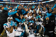 January 24, 2016: Carolina Panthers vs Arizona Cardinals. Carolina Panthers huddle around Cam Newton for a team photo