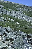 Cairngorm Mountain Slope, Scotland, UK