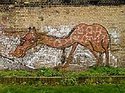 Hackney E8 2009