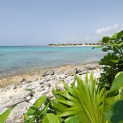 Beach at Akumal. Riviera Maya. Quintana Roo. MX