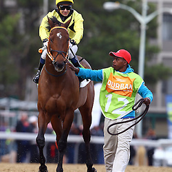 Durban, SOUTH AFRICA, 2, July 2016 - GV from the Durban Golden Horseshoe (Grade 2) – 1400m – R600 000 during   the 2016 Vodacom Durban July ,Greyville Racecourse Durban, South Africa from June 22-26, 2016. (Photo by Steve Haag)