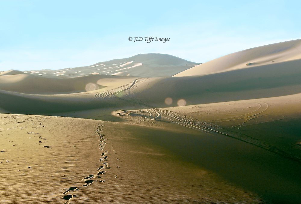 """The Erg Chelebi sand dune, largest in the Sahara Desert, at sunrise, from below across rolling approach dunes.  Human and animal footprints, a few vehicle tracks, pattern the sand.  """"What makes the desert beautiful is that somewhere it hides a well.""""  ~Antoine de Saint-Exupery"""