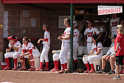 09 May 2014:  The Birdhouse (Redbird Dugout) during an NCAA Missouri Valley Conference (MVC) Championship series women's softball game between the Loyola Ramblers and the Illinois State Redbirds on Marian Kneer Field in Normal IL