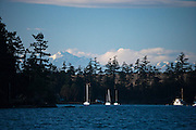 boats at anchor at Lopez Island with the Olympic Mountains beyond, San Juan Islands, Washington, USA