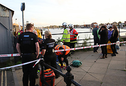 Fareham,Hampshire Thursday 28th September 2017  A major rescue operation to rescue a single dolphin has taken place in Fareham Hampshire. Emergency services and animal rescue specialist were called just after 5.15pm this afternoon to Fareham Creek after a member of the public raised the alarm after spotting the animal in distress. Locals had named the animal Dennie. One resident who was facing rescuers  said he had been in the creek for about a week. Fire crews from Fareham and the specialist water rescue unit was sent to the incident. Firefighters in full dry suits attempted to rescue the animal©UKNIP