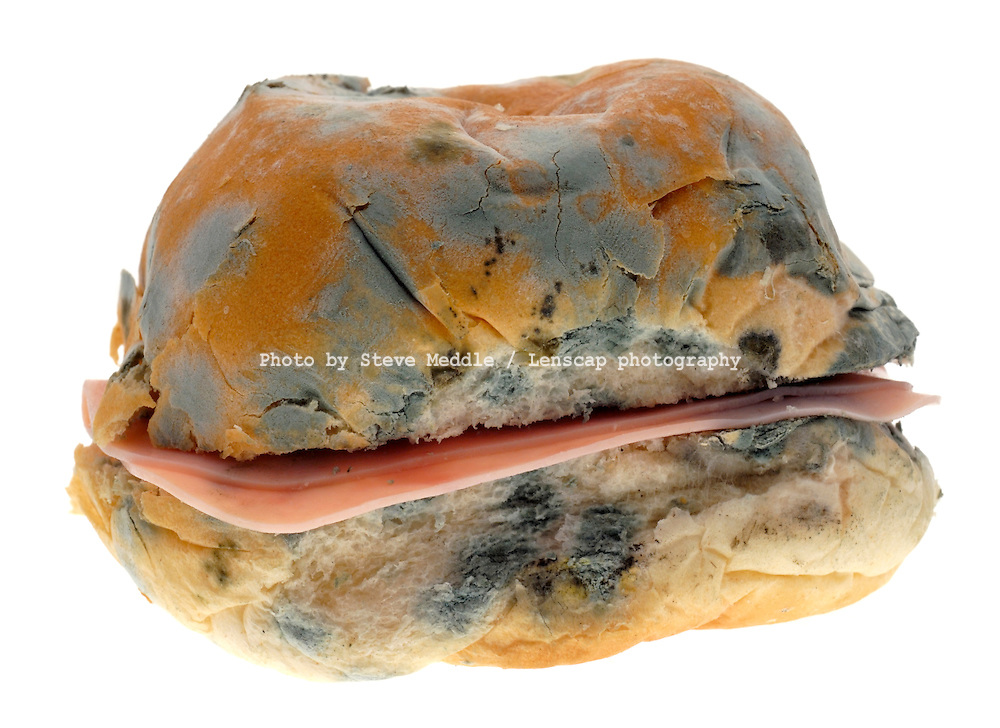 Mouldy Old Ham Roll
