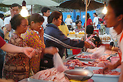 selling meat at the food Market at Lopburi, Thailand Lopburi is a city in Thailand, capital of the Lopburi province. The city is located about 150km north-east of Bangkok. Today the city is most famous because of its monkeys. Especially around the Khmer temple Prang Sam Yot hundreds of Crab-Eating Macaques (Macaca fascicularis) live in the middle of the city. Especially during the Monkey festival in November they are fed by the local people, but being used to humans they steal whatever food they can find.