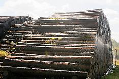 Stockage bois humide