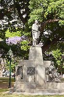 ARBOLES DE JACARANDA FLORECIDOS, CIUDAD DE BUENOS AIRES, ARGENTINA (PHOTO © MARCO GUOLI - ALL RIGHTS RESERVED)
