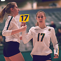 3rd year setter, Kirstin Greve (17) of the Regina Cougars during the Women's Volleyball home game on Fri Jan 25 at Centre for Kinesiology, Health & Sport. Credit: Arthur Ward/Arthur Images