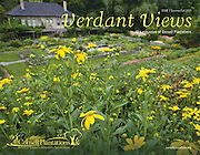 Rudbeckia 'Goldsturm' at Cornell Botanic Gardens