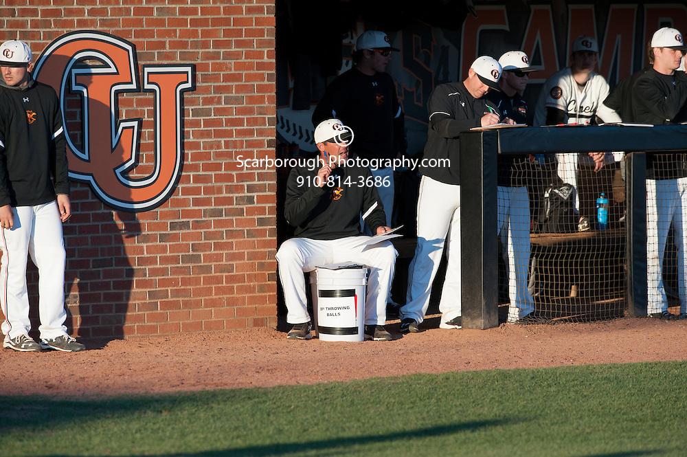 Baseball vs Minnesota  Photo By Bennett Scarborough